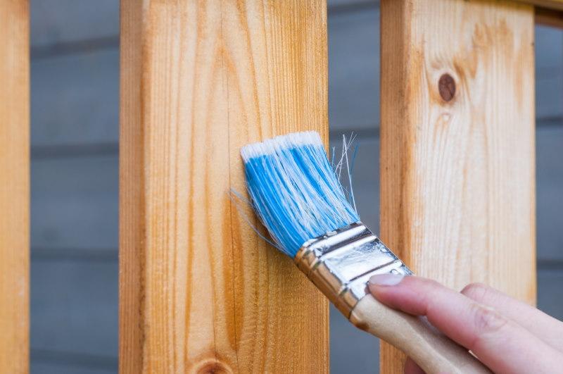 πινέλο βάβει φράχτη